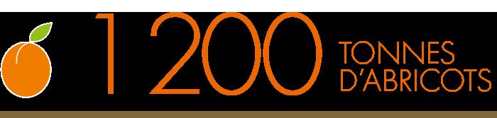 1200 tonnes d'abricots